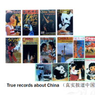 Chen Bo- Slides of CSCLF 4